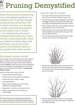 Pruning Demystified