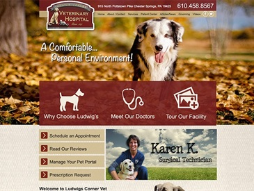 Ludwigs Veterinary Hospital - Web Design