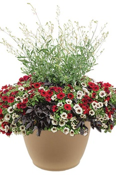 /Images/johnsonnursery/product-images/Enchanted-Garden-combo2_ucts42t5i.jpg