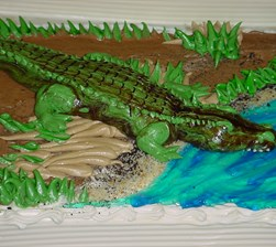 Alligator_Swamp_3D.JPG