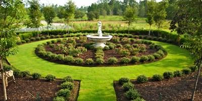 Plant Design Landscape Design