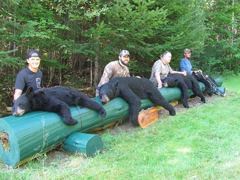 Tomah Mountain Outfitters Loves to Bag Bears