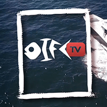 OIFC TV