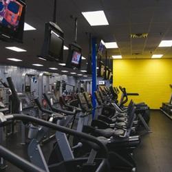 cardio workout programs
