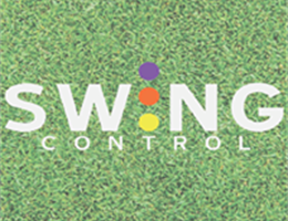 Swing Control, in Love our Website, SELECT STATE